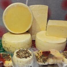 Сыр из коровьего молока